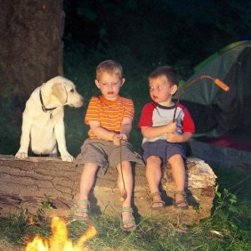 Rural Retreats pet friendly cottages