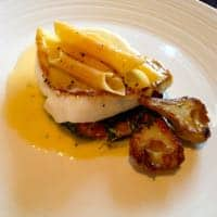 Turbot - wow