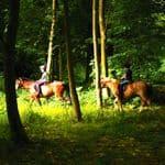 Equestrian Centre