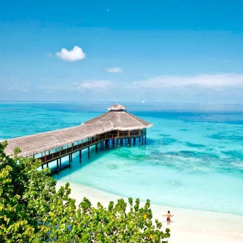 Maldives for singles