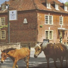 New Forest pub stay