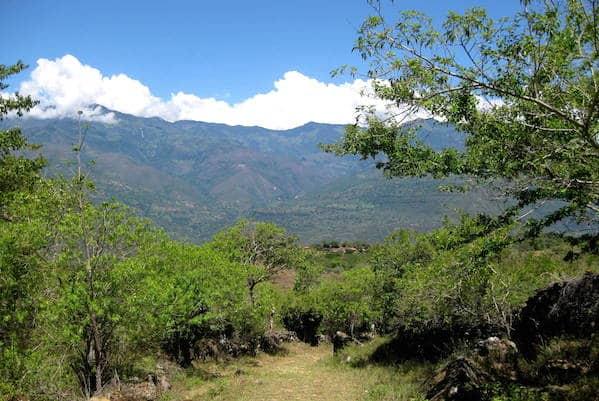 Camino Real - Journey Latin America