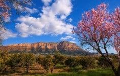 Alicante's Secret Mountains
