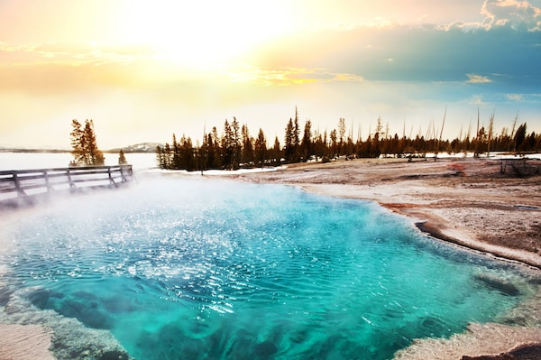 meet yellowstone national park singles At yellowstone national park lodges, you're invited to discover or rediscover the magic of the world's first national park, yellowstone.