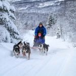 Try dog-sledding