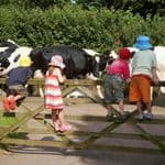 Holidays for preschool children