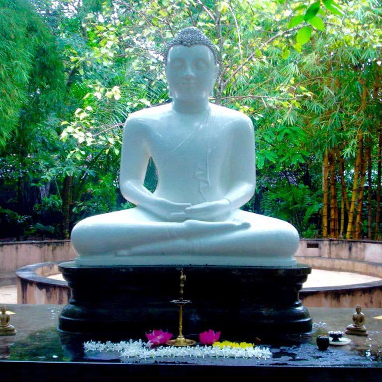 Sri Lanka family adventures
