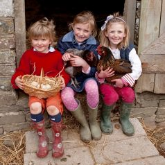 Farm family holidays in England