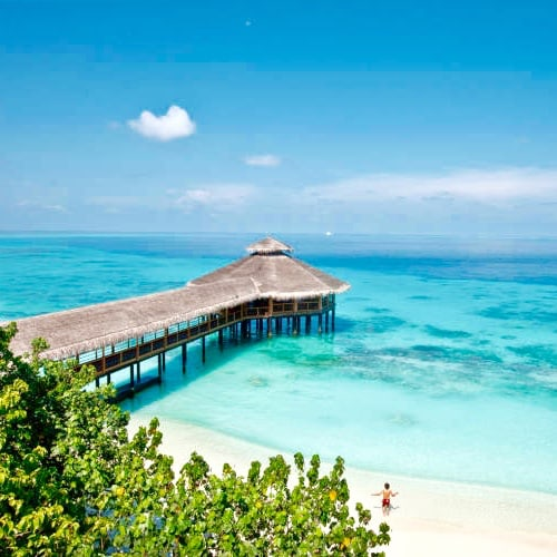 Maldives for singles