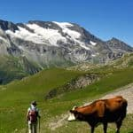 Walking in the French Alps