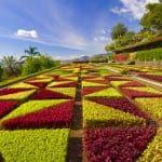 Botanical Gardens, Madeira