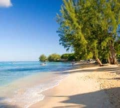 Holiday ideas in Barbados