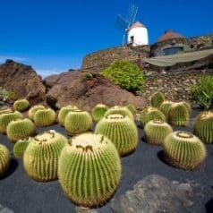 Lanzarote in November for warm temperatures