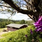 Farm camping holidays