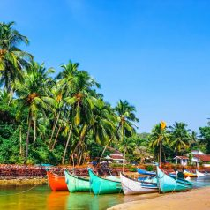 Goa is hot and cheap in January