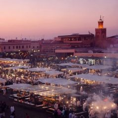 Warm February days in Marrakech